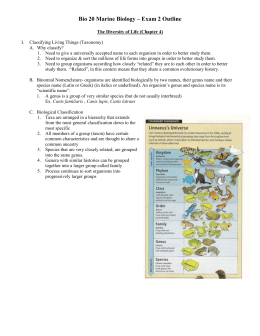 tides oceanography essay Co-4 analyze ocean-atmosphere interactions and their general effects on weather and climate and discuss aspects of global warming co-5 explain interconnections among subfields of oceanography and other disciplines in science and engineering co-6 apply appropriate principles, theories, and models to solve specific practical problems co-7.