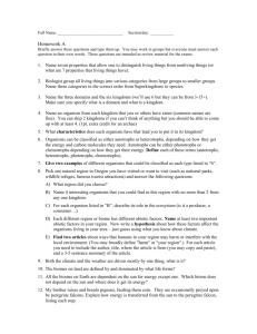 Euthanasia.? essays - Essay Writing