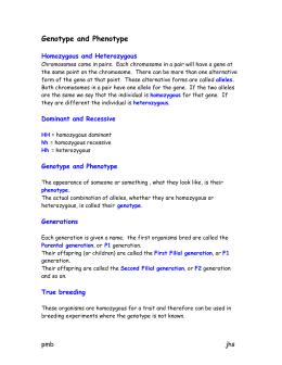igenetics a molecular approach 4th edition pdf