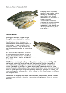 Salmon, Trout & Freshwater fish