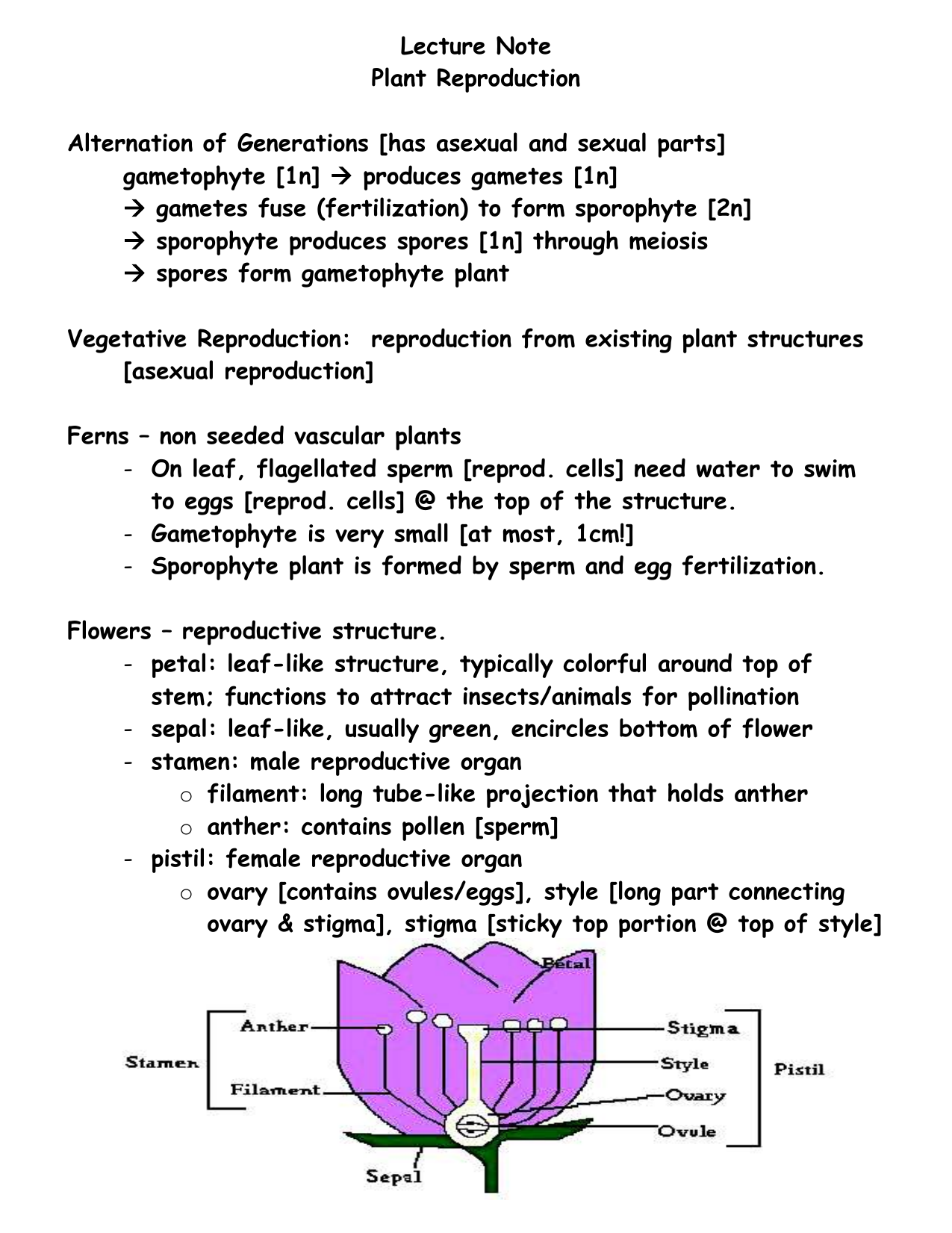 Lecture Notes Plant Reproduction