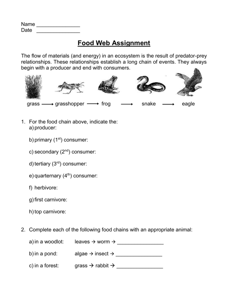 Workbooks predator and prey worksheets : 1.2. Food Web Worksheet
