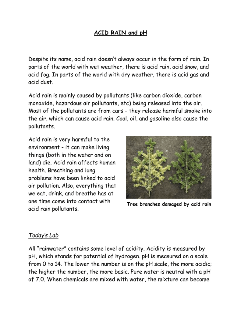 Acid Rain And Ph Worksheet