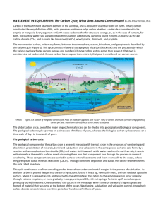 AN ELEMENT IN EQUILIBRIUM: The Carbon Cycle, What Goes