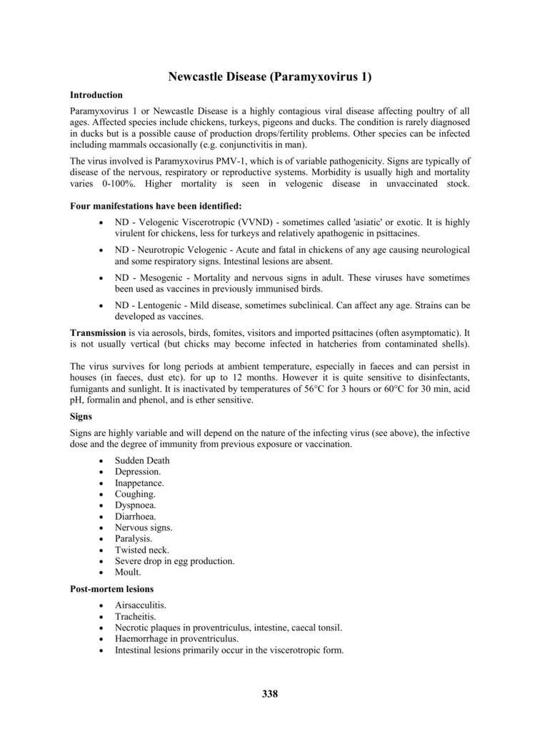 Newcastle Disease (Paramyxovirus 1)