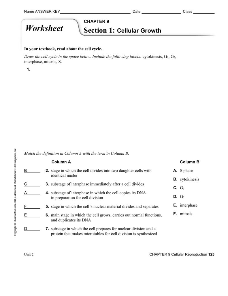 Ch 9 Worksheet Answer Key