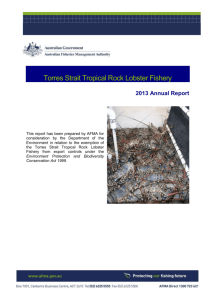 Torres Strait Tropical Rock Lobster Fishery