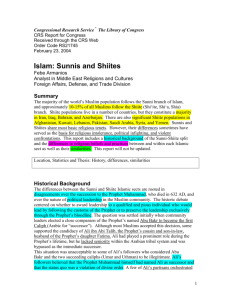 Sunni and Shiite Differences Notes