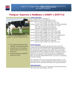 click here for sire report