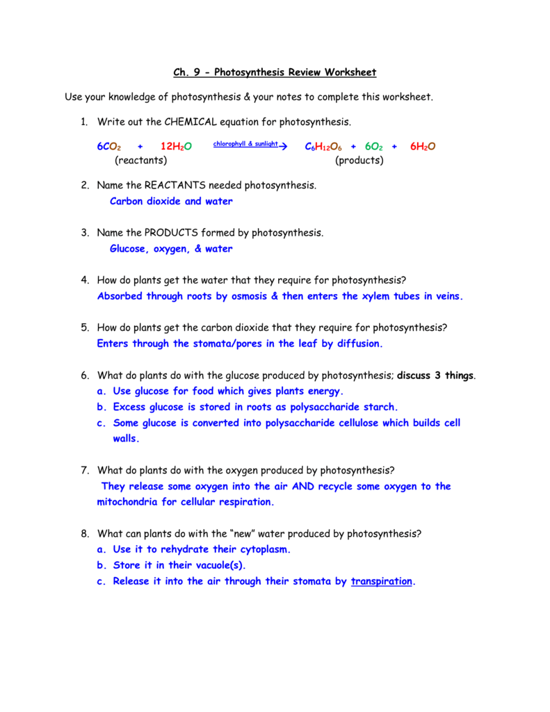 Ch. 9 - Photosynthesis Review Worksheet Use your knowledge of
