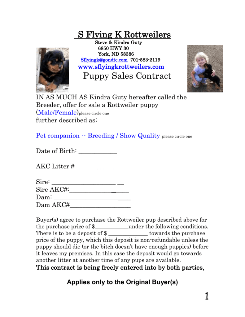 puppy sale contract