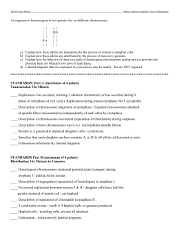 study guide b rh studylib net Mitosis Study Questions holt mcdougal biology study guide b section 1 chromosomes and meiosis