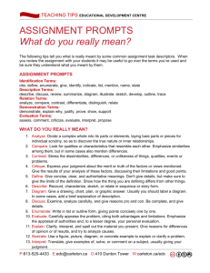 ASSIGNMENT PROMPTS What do you really mean?