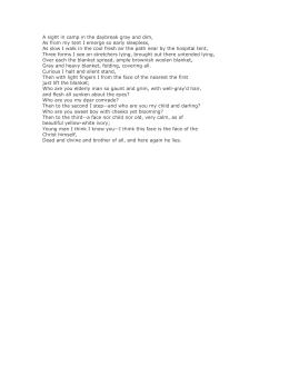 The Century Quilt Poetry Essay Practice