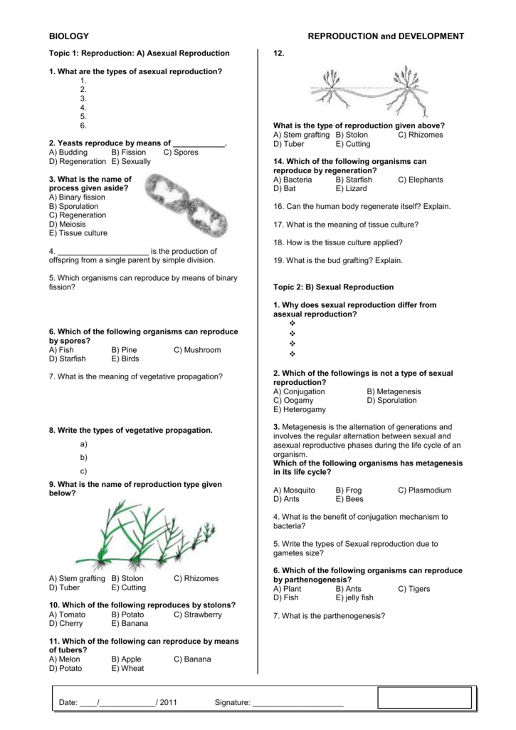 10AB worksheet (2)