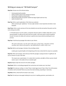 10 Step Essay on All Gold Canyon.doc