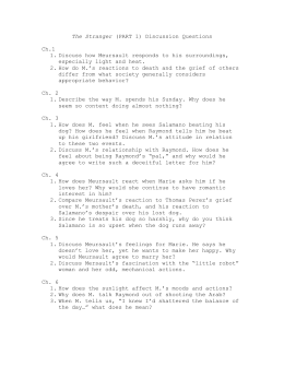 questions for critical essay on the stranger the stranger discussion questions doc
