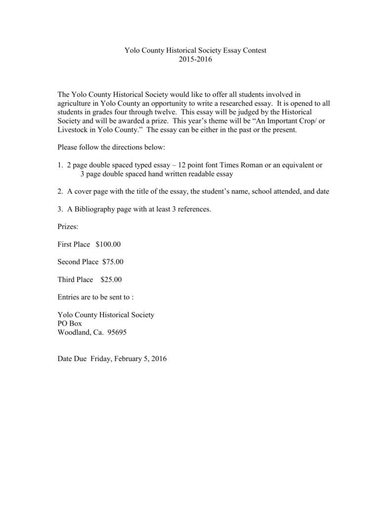 3 page essay