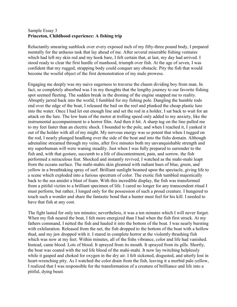 Research Proposal Essay Example  Research Essay Proposal Sample also Good Proposal Essay Topics College Essay Unit Sample Essay  Princeton Childhood How To Write An Essay Proposal Example