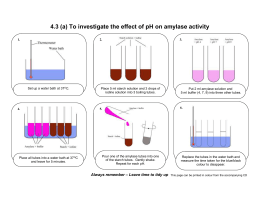 action of salivary amylase on starch practical