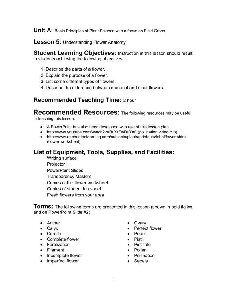 FlowerEnglish – Flower Anatomy Worksheet