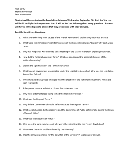 the reign of terror possible short essay questions