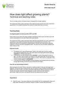 Teachers Notes - How does light affect growing plants