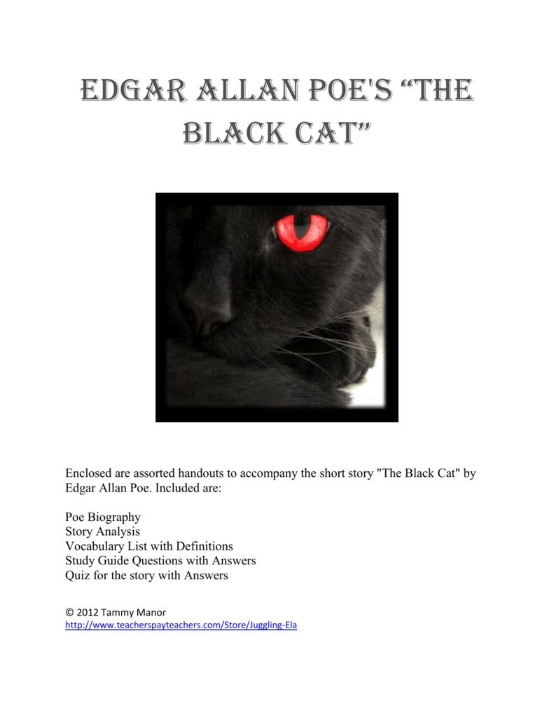 the black cat short summary