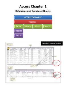 Access Chapter 1: Databases and Database Objects Camashaly