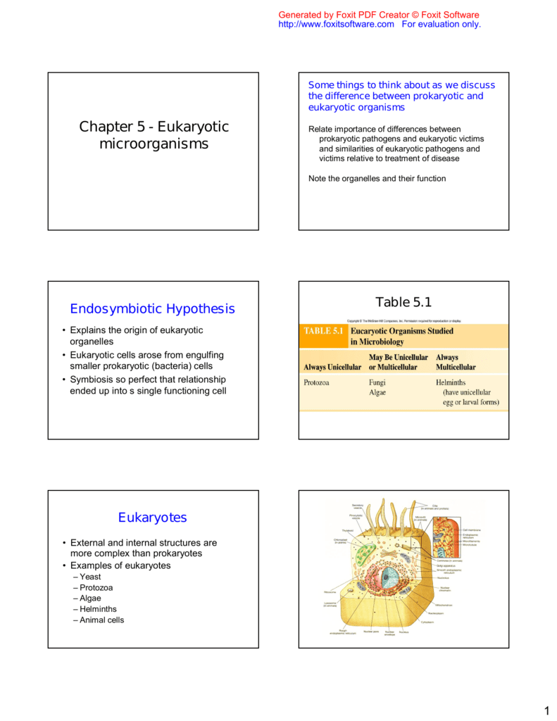 Asexual and sexual reproduction quiz pdf creator