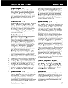 28 Chapter 12 Section 1 Dna The Genetic Material Worksheet ...