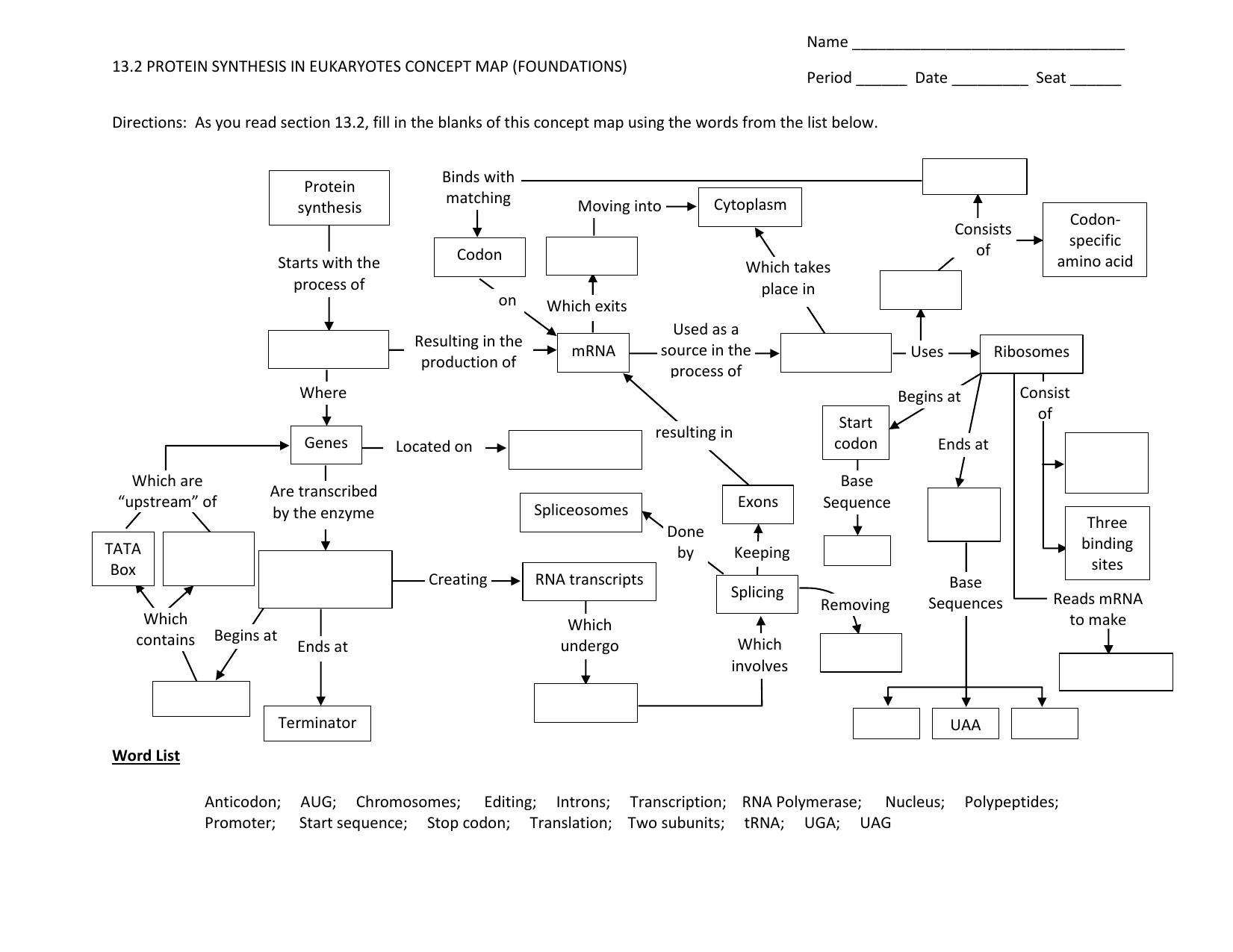 Translation Concept Map.Protein Synthesis Concept Map