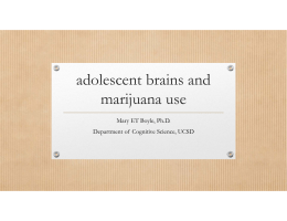 Developing Brain and Marijuana Use