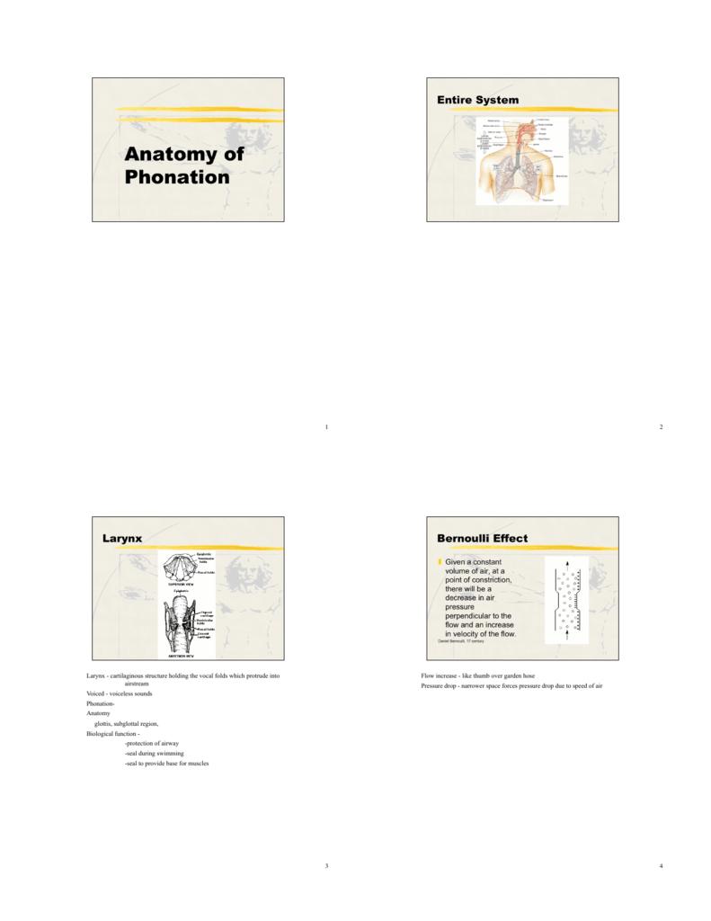 4. Anatomy of Phonation