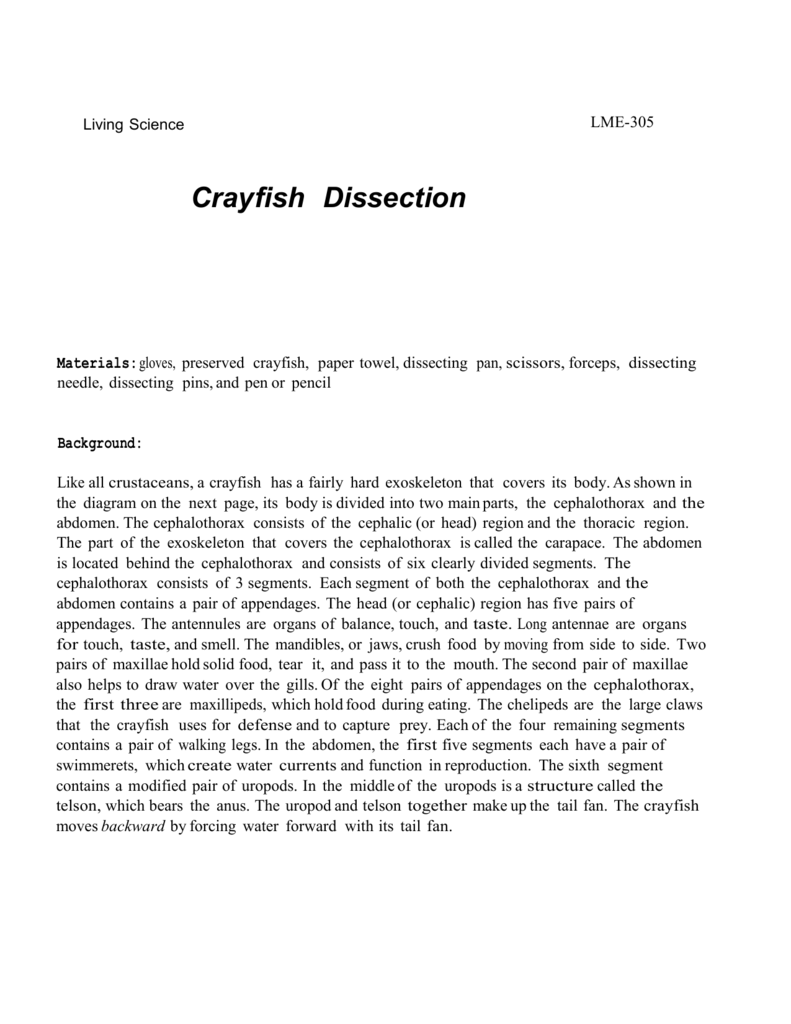 LME305 Region 20 – Crayfish Dissection Worksheet Answers