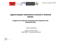 Ligand-receptor interactions involved in chemical senses. Insights