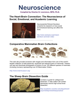 PDF File with Links to Neuroscience Web Sites