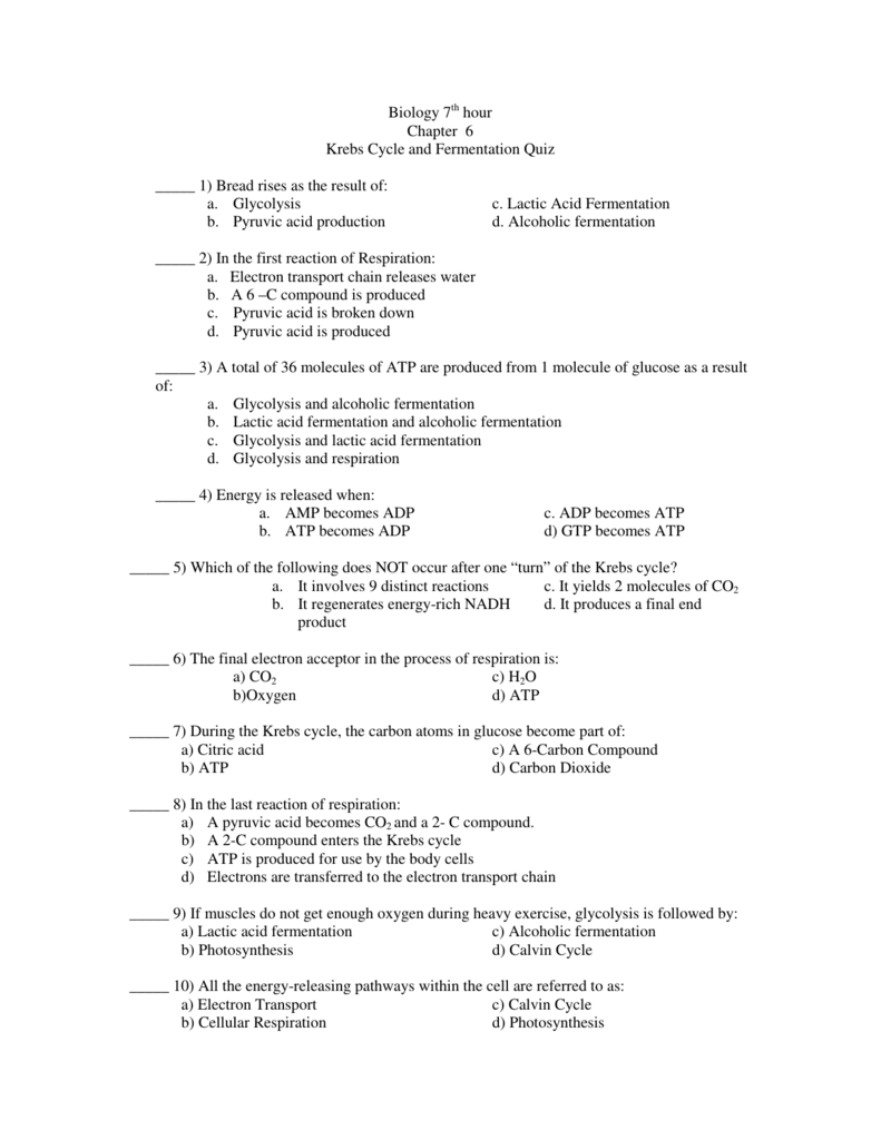 worksheet Fermentation Worksheet biology 7th hour chapter 6 krebs cycle and fermentation quiz
