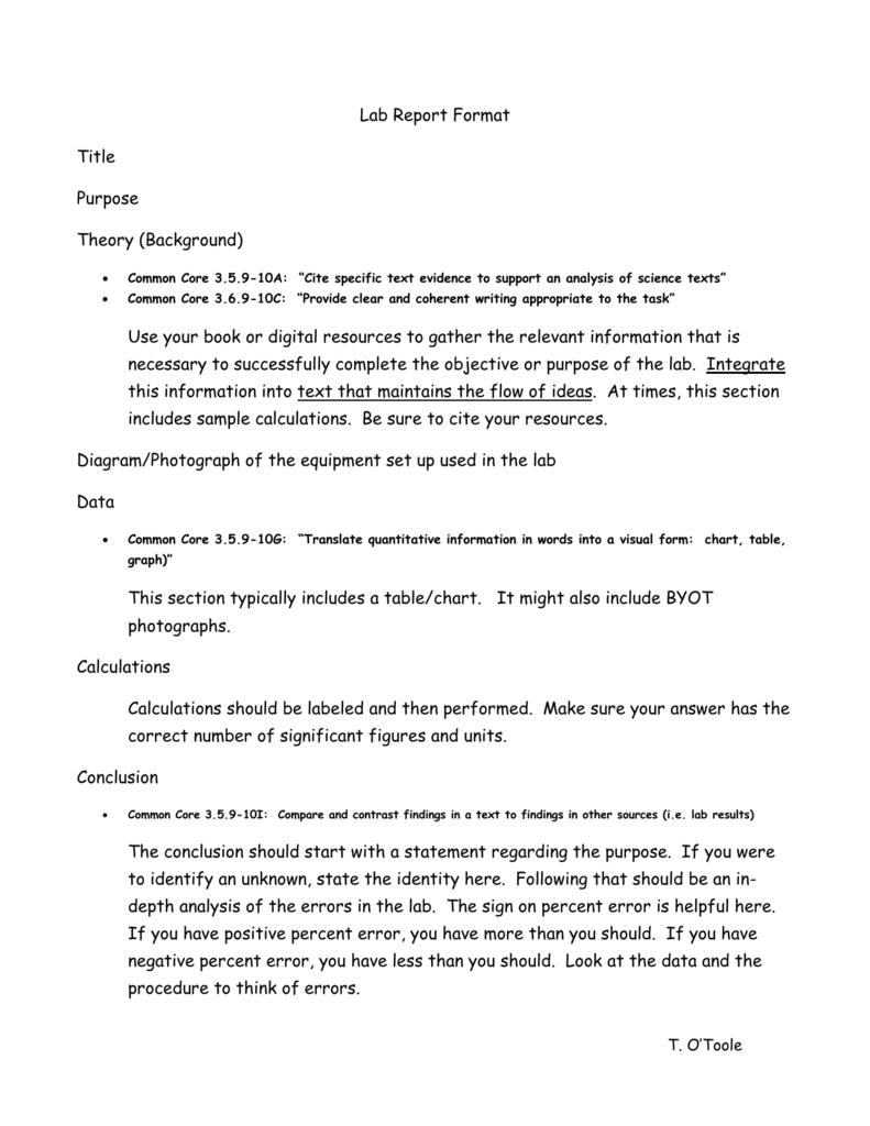Marketing Plan essay for me