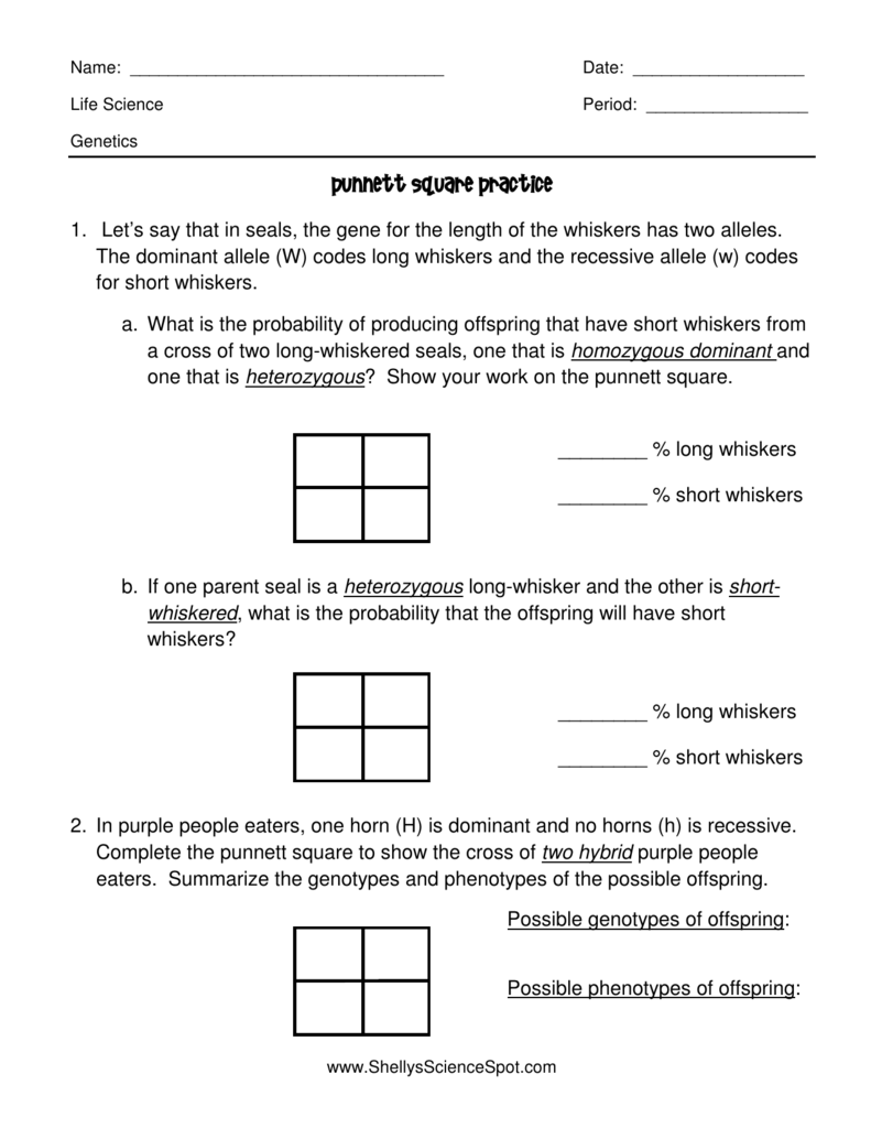 Worksheets Punnett Square Worksheet 1 Answer Key punnett square practice