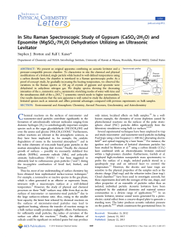 In Situ Raman Spectroscopic Study of Gypsum (CaSO4·2H2O) and