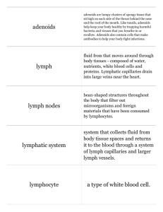 Print › UIL Science | Quizlet | Quizlet