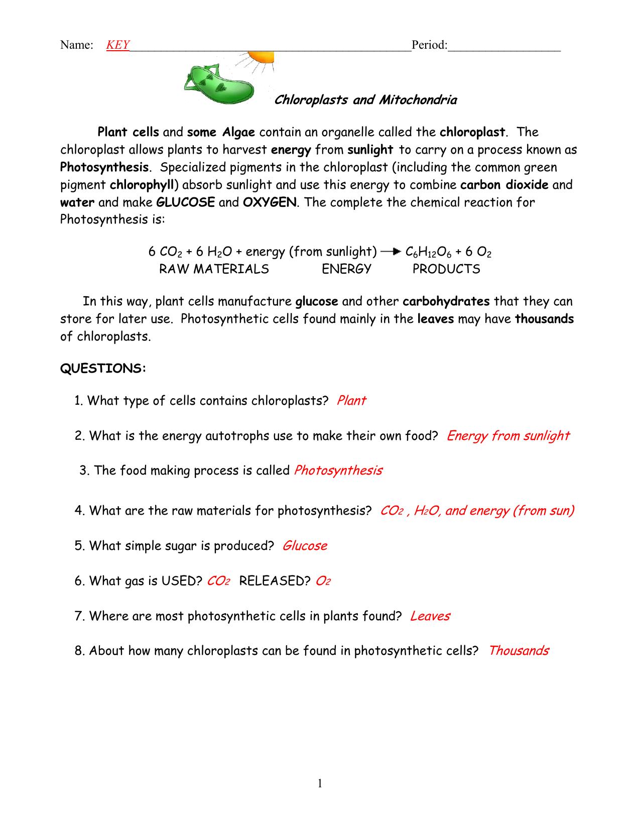 Photosynthesis Making Energy Worksheet Answers Energy Etfs
