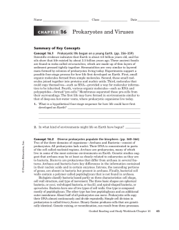 introduction to prokaryotes lab report Introduction: principles of microscopy to observe prokaryotic cells microscopy biology lab exercise & report.