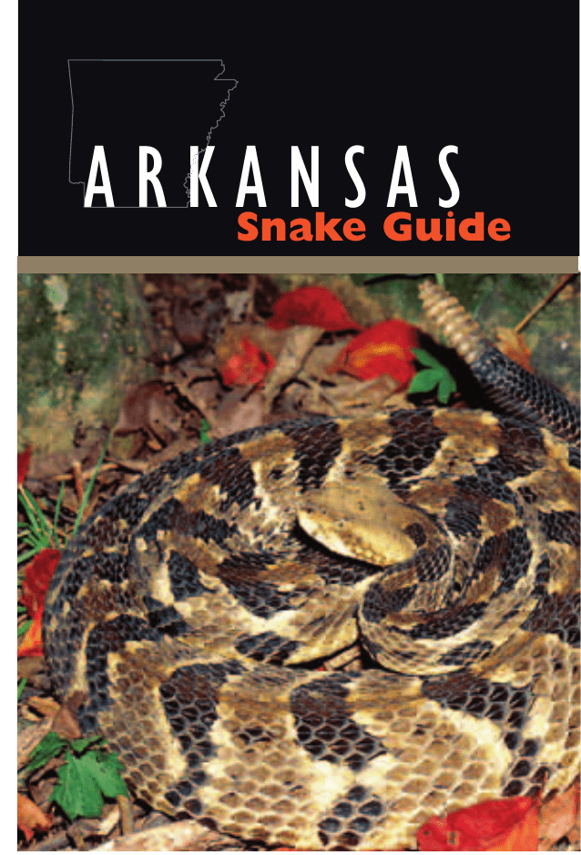 Ar Snake Guide Arkansas Game And Fish Commission