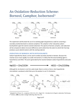 stereoselective reduction of camphor lab report Stereoselective total synthesis of the potent anti-asthmatic  short report 26-5  relaxation and diffusion during oxidation-reduction processes in conducting.