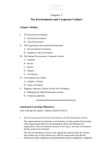 Chapter 3 The Environment and Corporate Culture