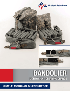 Bandolier - Critical Solutions International