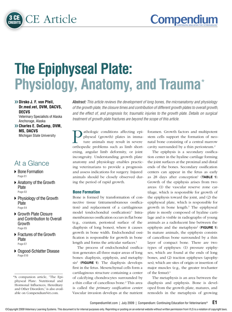 The Epiphyseal Plate: Physiology, Anatomy, and Trauma*