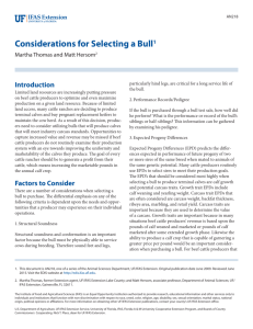 Considerations for Selecting a Bull1